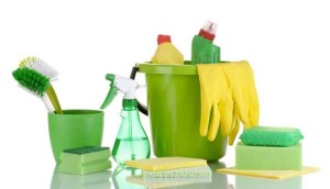 green cleaning companies