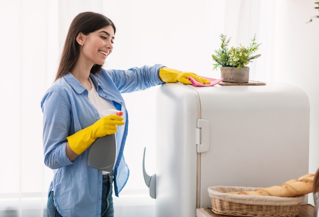 hhomemaids home cleaning